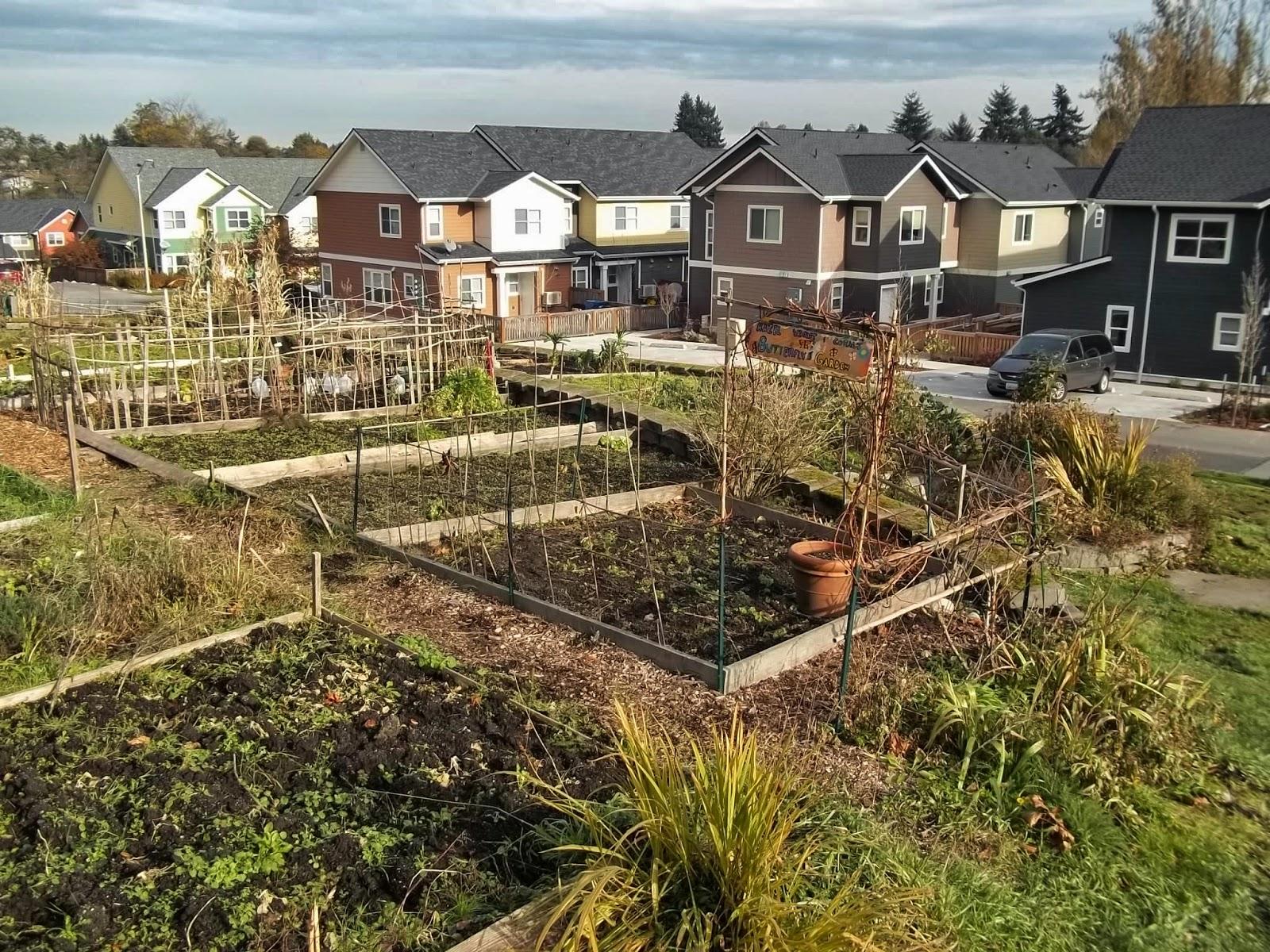 Urban Landscape, Native Landscape: Seattle Community Farm at Rainier ...