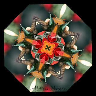 Melbe Creations Kaleidoscope Mandala Sacred Geometry Art By Melissa ...