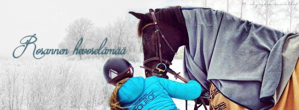 Rosannen hevoselämää