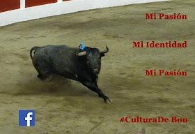 Cultura Taurina  #CulturadeBou