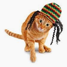 Rasta Kitty - I have to get this for my cat!