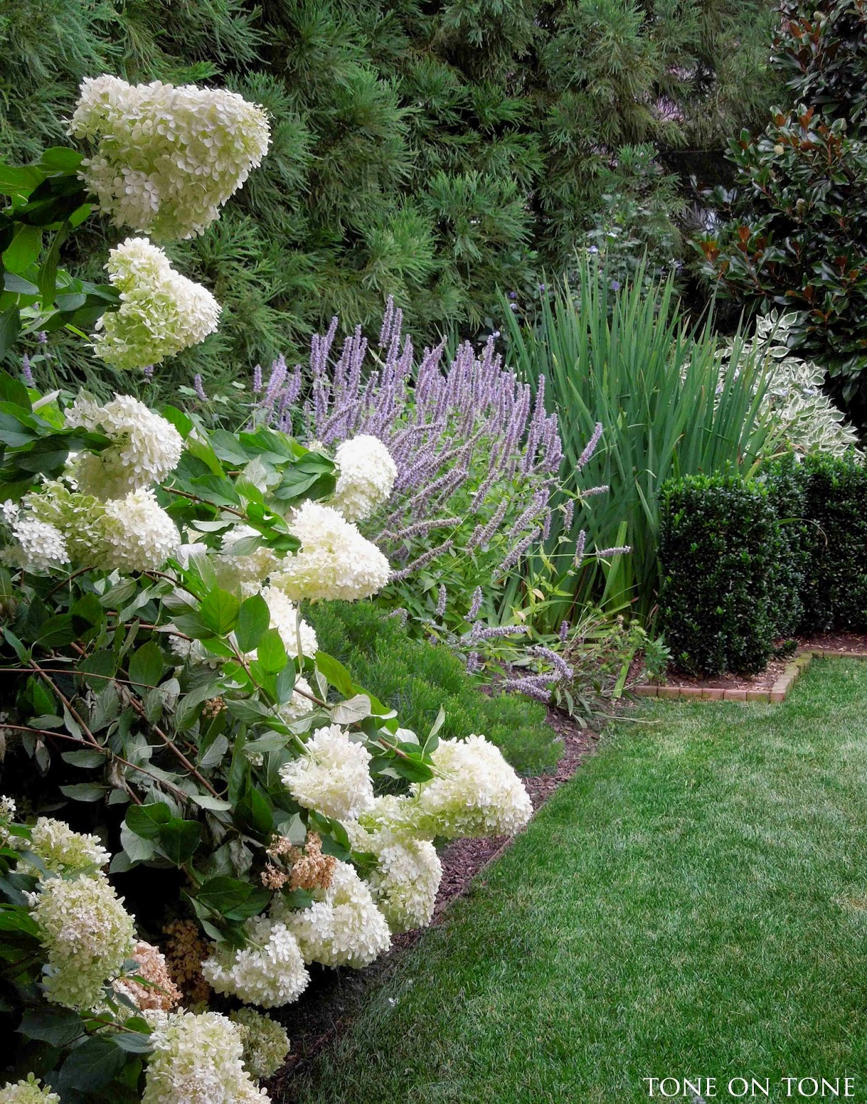 Tone on tone august 2014 for Landscape gardeners