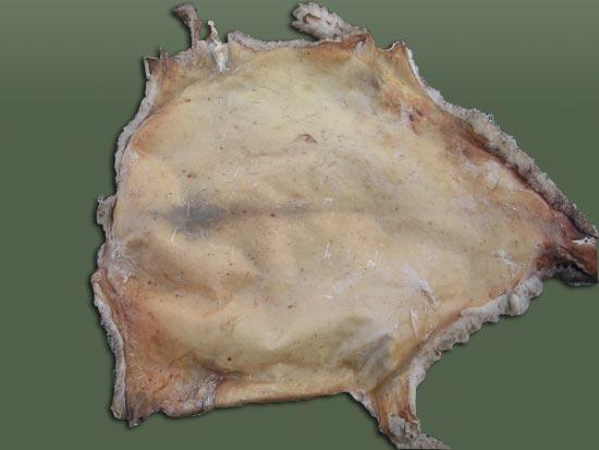 Pitillas remate de pieles - Pieles de oveja ...
