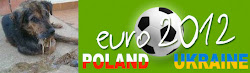 BOICOTTIAMO EURO 2012