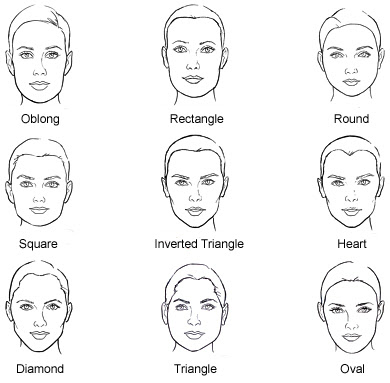 women_face_shape.jpg (390×383)
