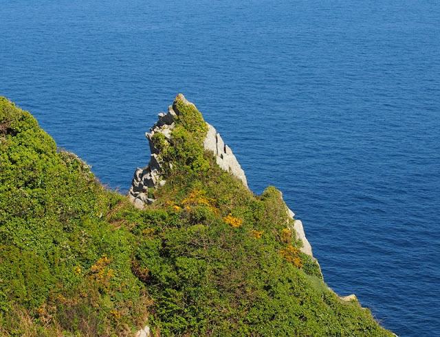 Cap Sizun : de la Pointe de Penharn à celle de Brézellec
