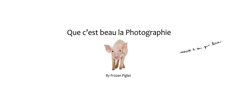 """Que c'est beau la photographie. Ce blog est écrit sous le pseudonyme """"Frozen Piglet"""". Humour grinçant, ton atypique, sens de l'analyse aiguisée. Ce blog est écrit sous le pseudonyme """"Frozen Piglet"""". Humour grinçant, ton atypique, sens de l'analyse aiguisée."""