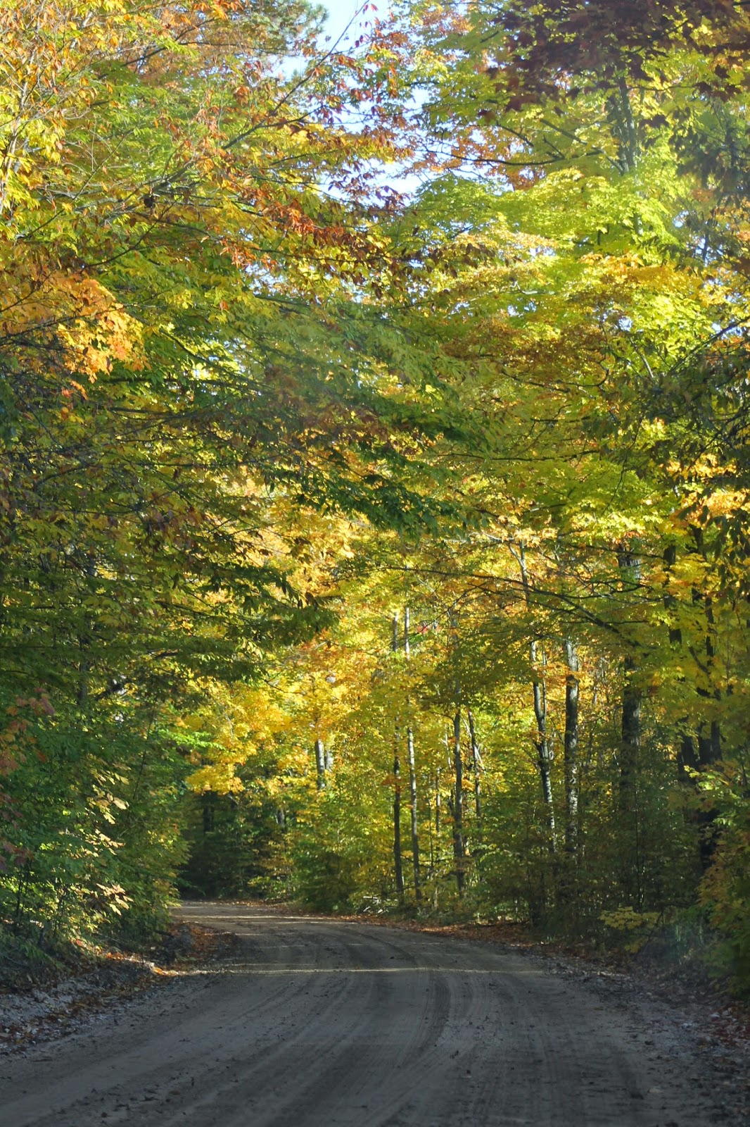 Just the Joy\'s: Northern MI Fall Color Tour