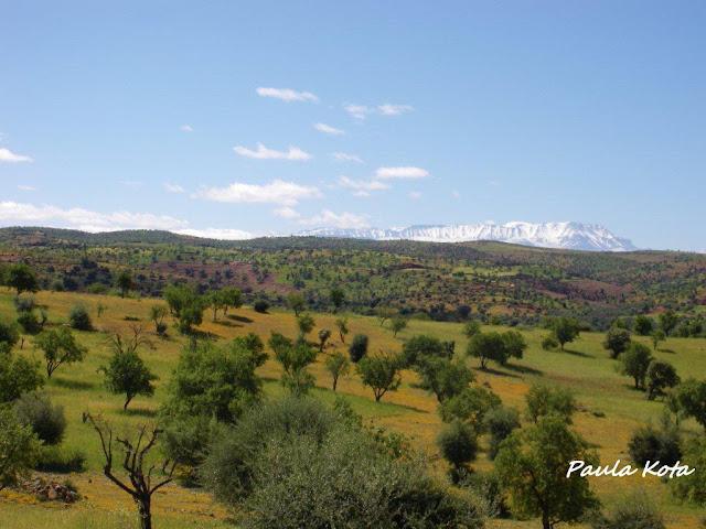 Na Terra do Sol Poente - Viagem a solo por Marrocos - Página 2 IMGP0419