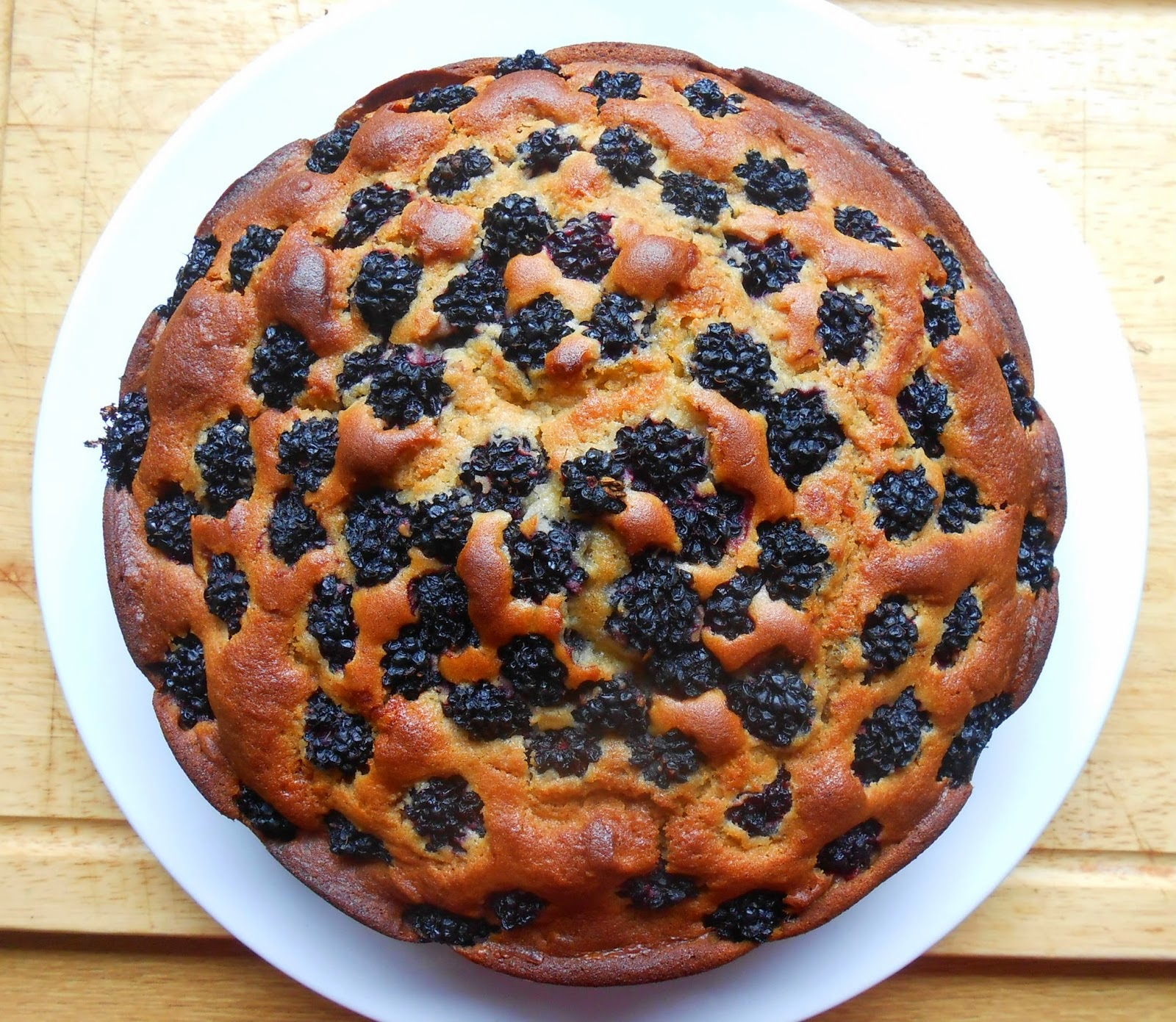 Blackberry Honey Cake Sugar Free