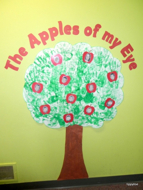 Apple Tree Classroom Ideas ~ Tippytoe crafts apple tree class display