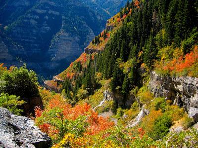 Provo Canyon Bigfoot