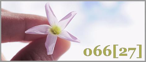 onda66 [27]