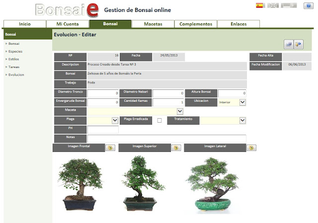 Bonsai-e, Evolucion