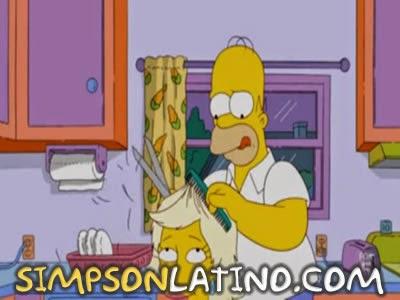 Los Simpson 22x20