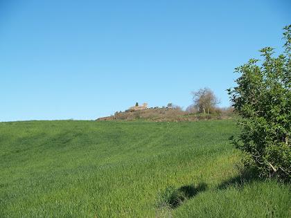 L'ermita de Sant Cugat de Gavadons des del Pla de Can Regàs