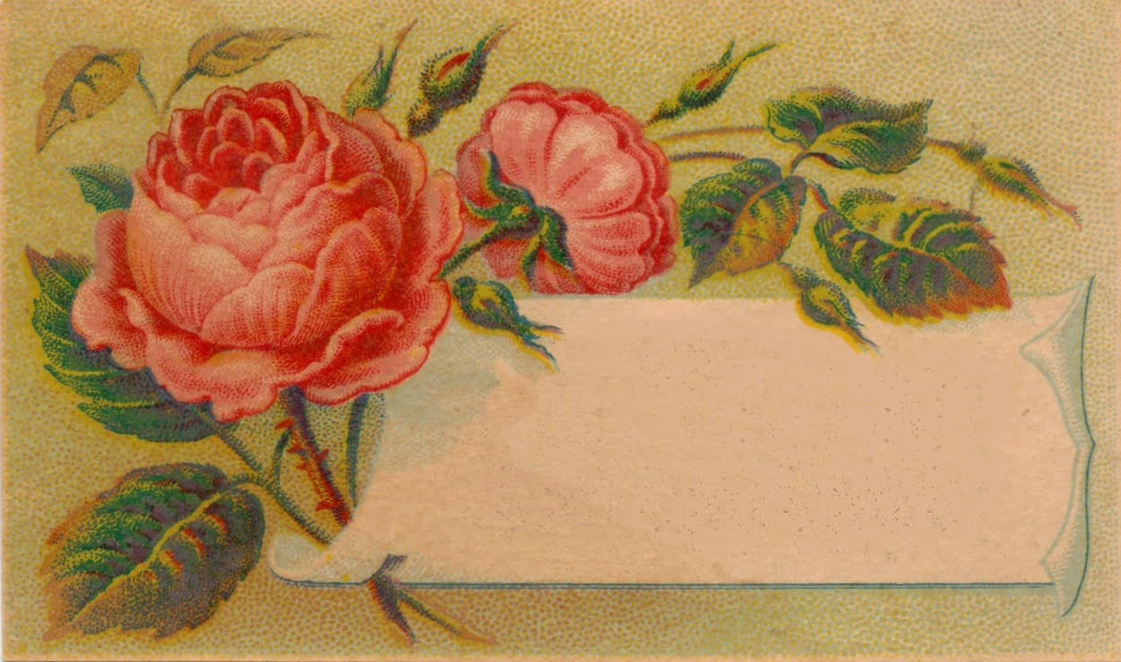 Free image of the day!: Victorian Calling Card Blank