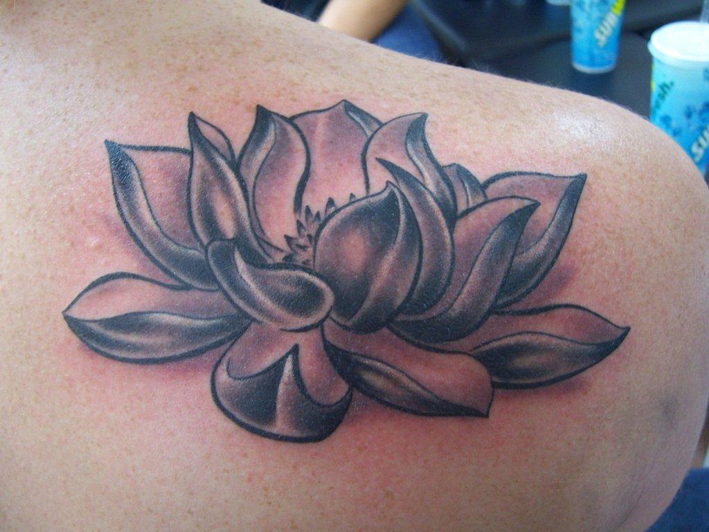 Tattoo Flor de Lotus - O Poder Mágico da Lotus Tattoo Symbol