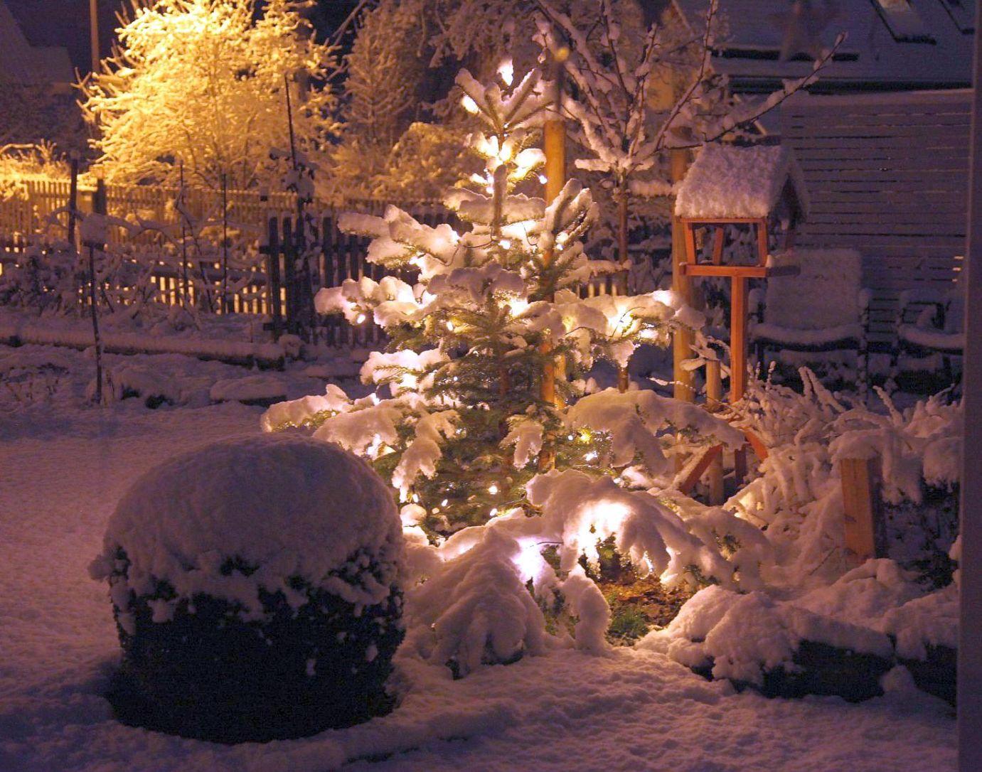 do|mi|s garten: schnee im garten bei nacht, Garten Ideen