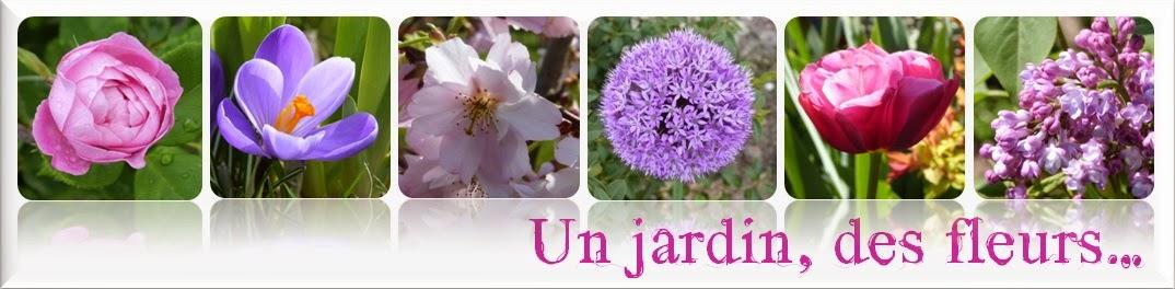 Un jardin, des fleurs