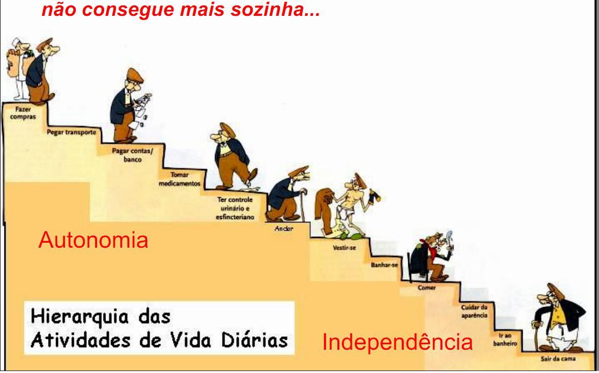 Conselho Municipal do Idoso de Campinas: Envelhecimento e ...