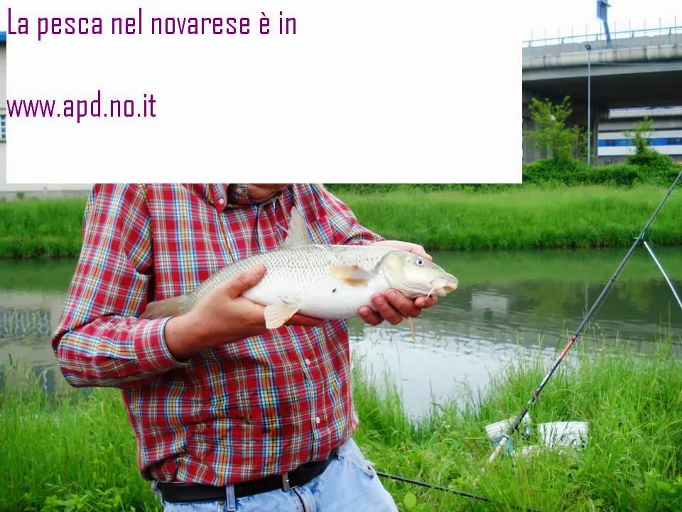 Comprare serie per pesca invernale
