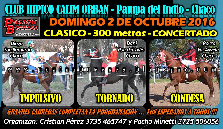 Pampa del Indio - 2 - 300