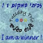 I AM A WINNER SEVEN TIMES