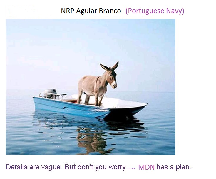 Portuguese Navy by 2015