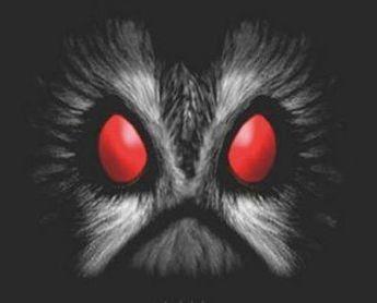 OwlMan, el Hombre Búho Owlman7