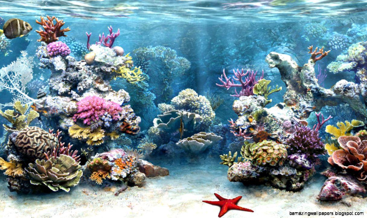 Fish aquarium background amazing wallpapers for Fish tank background ideas