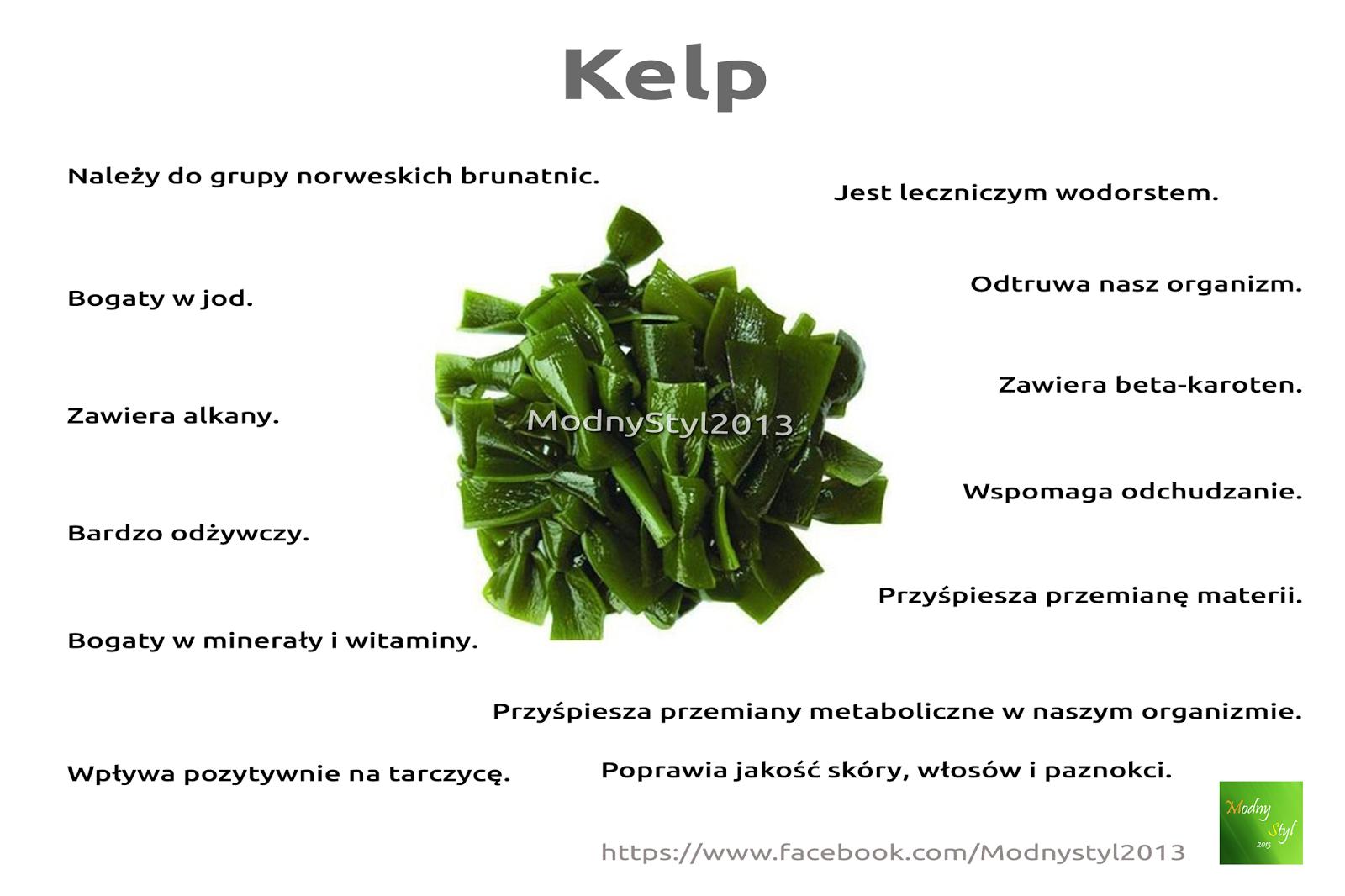 Kelp - leczniczy wodorost