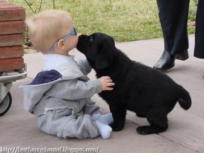 Baby and puppy.