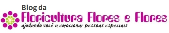 Floricultura Flores e Flores
