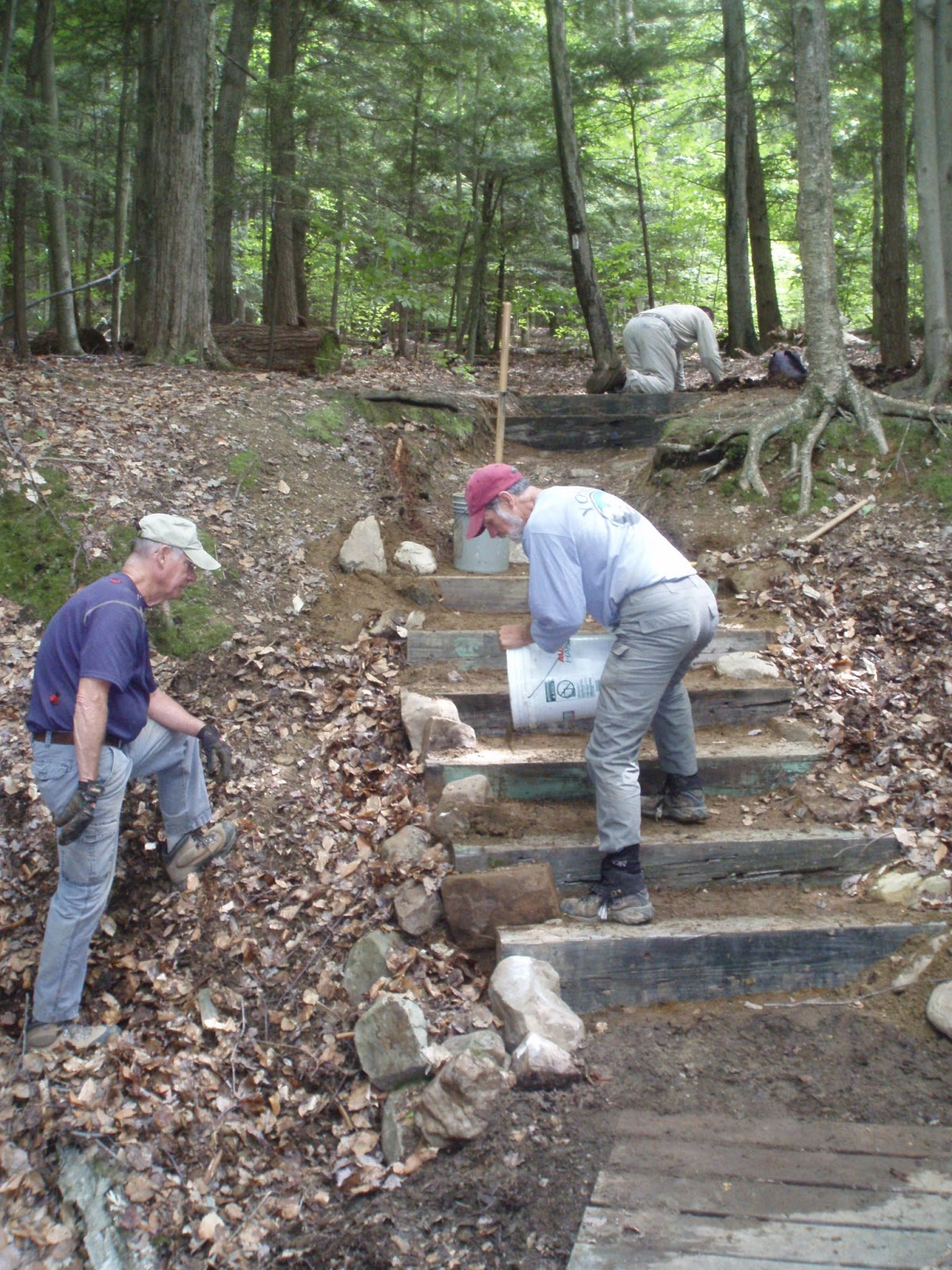 Fun in the woods massachusetts at committee project blog for How to build a house on a steep slope
