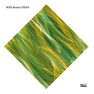 Wild Beasts – Stray Lyrics | Letras | Lirik | Tekst | Text | Testo | Paroles - Source: emp3musicdownload.blogspot.com