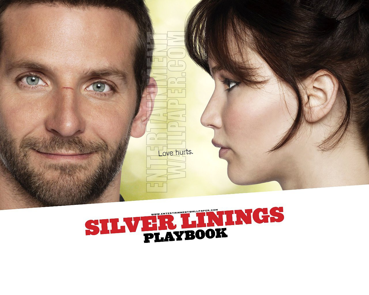 ... Killing Them Softly, Life of Pi, Silver Lining's Playbook and Red Dawn