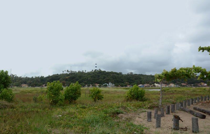 Porto de Pedras - Alagoas