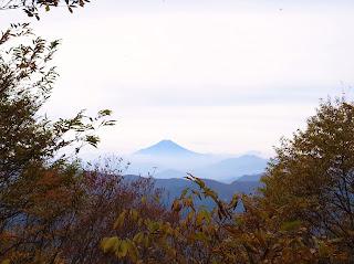 三頭山付近からの富士