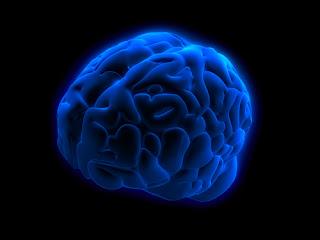 Εγκέφαλος και συνείδηση: γιατί δεν είμαστε ''ρομπότ''