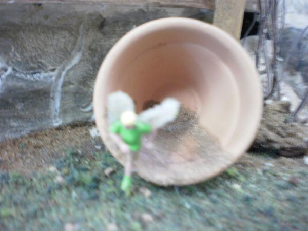 Fairy escapes