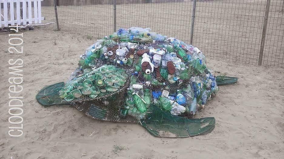 Cloodreams cio 39 che la mente pensa la mano crea for Vasche per tartarughe marine