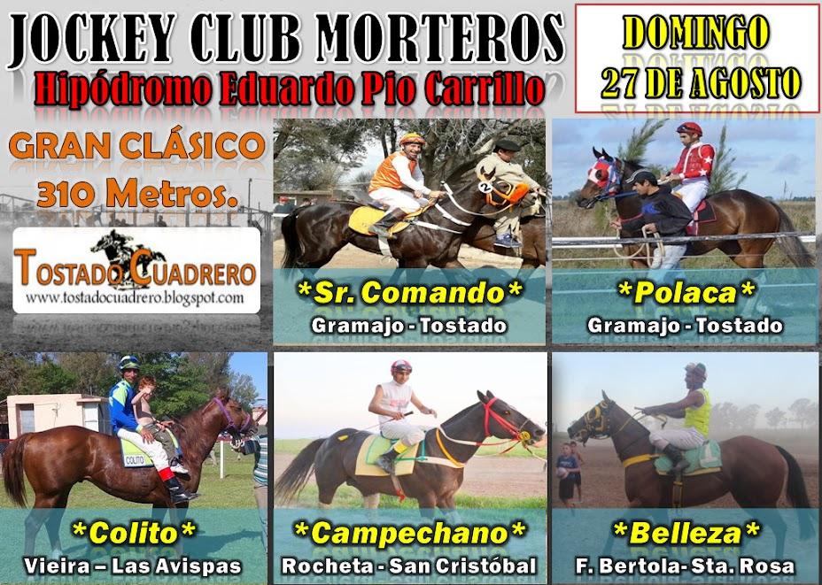 MORTERO 27-8-17 310