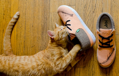 Bon Iver sneakers