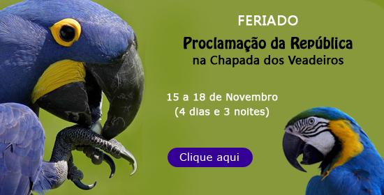 Feriado 15 de Novembro 2012 na Chapada dos Veadeiros
