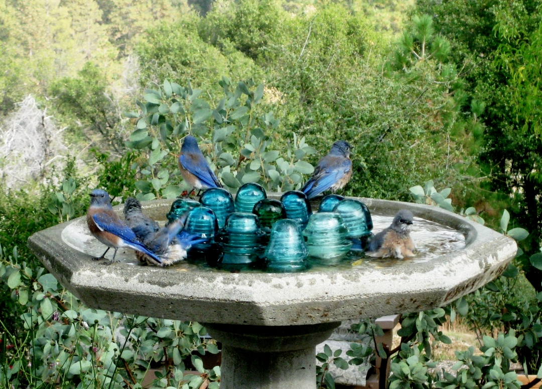 Upcycled Garden Style A Website From Gardens Inspired Upcycle Glass Insulators In The