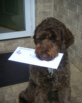 Now he's holding the envelope in his mouth and you can see it's got the GDTX logo on it.