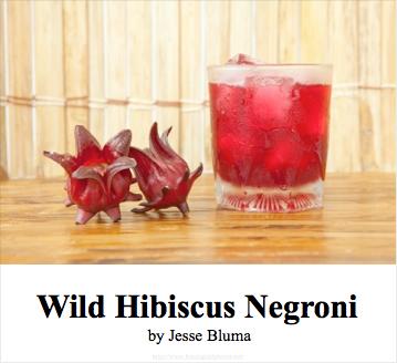 wild hibiscus cocktail