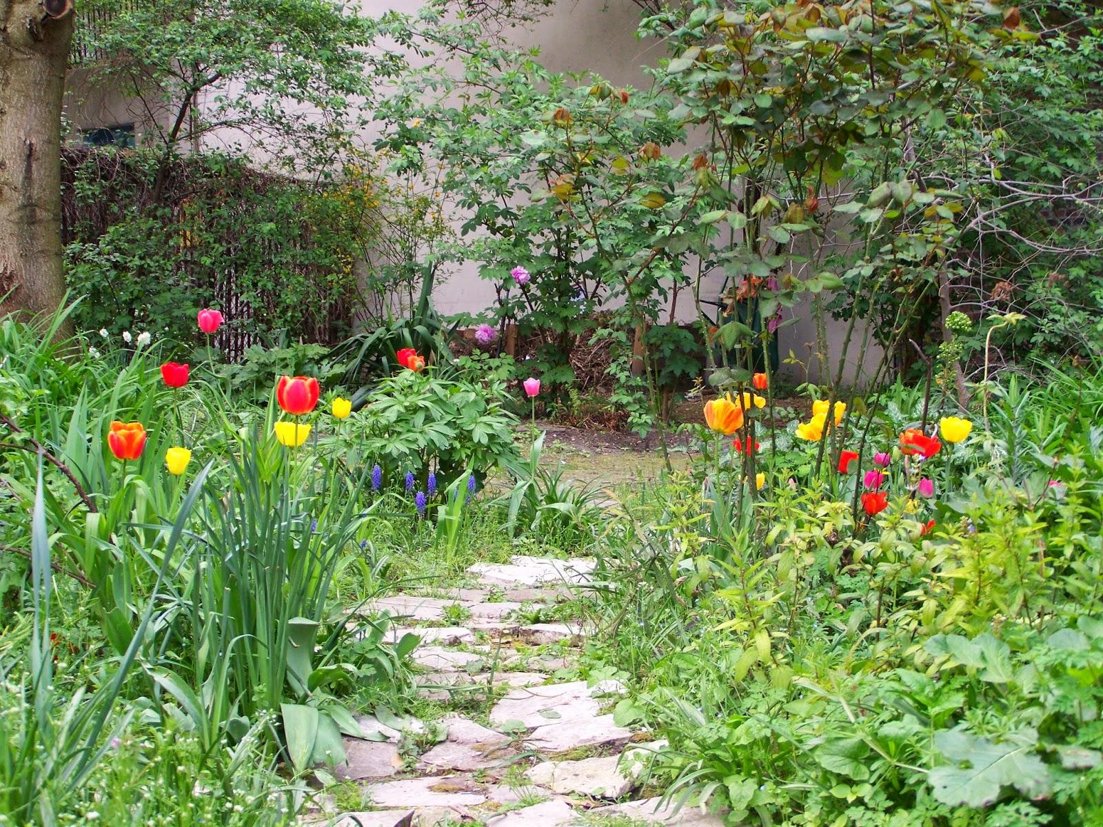 Le jardin des deux lauriers avril 2014 for Le jardin aux 100 secrets