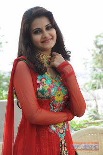 Malligadu-Marriage-Bureau-Actress-Manochitra-Stills